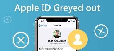 Apple ID ausgegraut