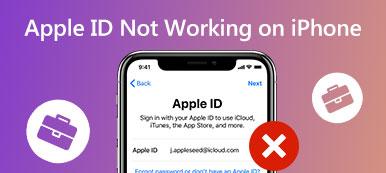 Apple ID funktioniert nicht auf dem iPhone
