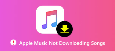 not Downloading Songs