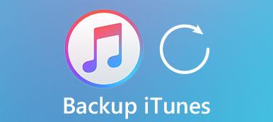 Sichern Sie iTunes