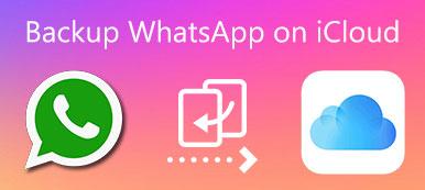 Sichern Sie WhatsApp auf iCloud