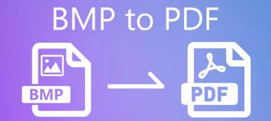 BMP zu PDF