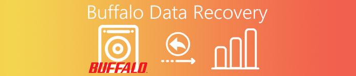 Récupération de données Buffalo