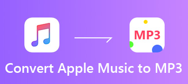 Konvertieren Sie Apple Musik in MP3