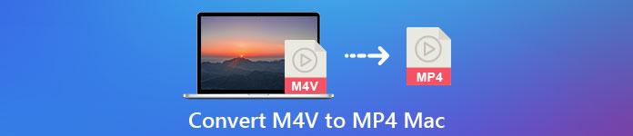 Konvertieren Sie M4V in MP4 auf dem Mac