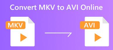 MKV nach Avi