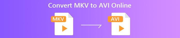 MKV à AVI
