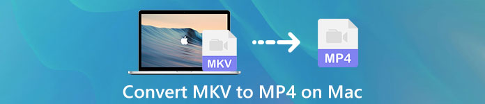 Konvertieren Sie MKV in MP4 auf dem Mac