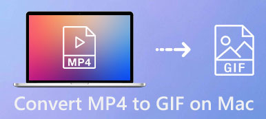 Convert MP4 to GIF on Mac
