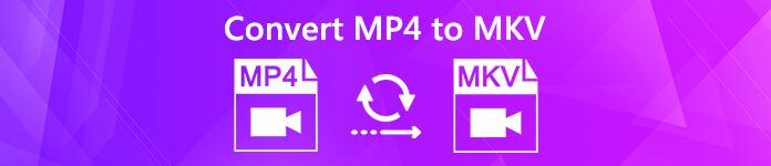 MP4 in MKV konvertieren