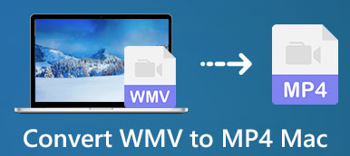 Convert WMV to MP4 on Mac