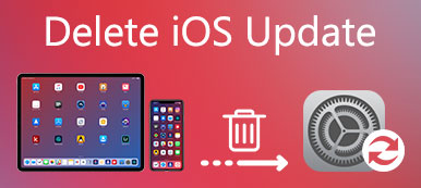 2019] How to Undo/Downgrade an App Update on iPhone and Android