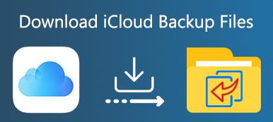 Laden Sie iCloud Backup herunter