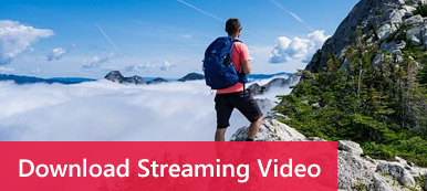 Online-Streaming-Video herunterladen