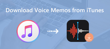 Download Voice Memos from iTunes