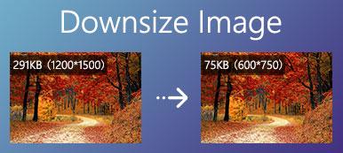 Réduire la taille de l'image