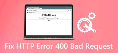 Fehler 400