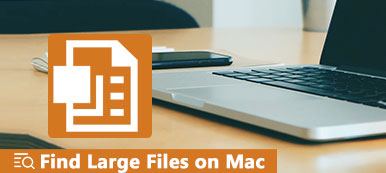Find Large Files on Mac