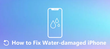 Fix Water Damaged iPhone