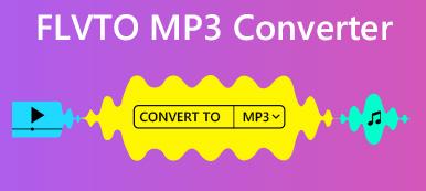 FLVTO MP3 Konverter