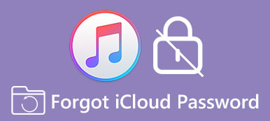 Forgot iCloud Password