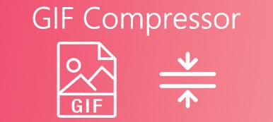 Compresseur GIF