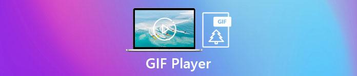 Lecteur GIF