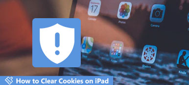 Delete Cookies on iPad
