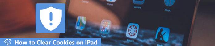 Supprimer les cookies sur iPad