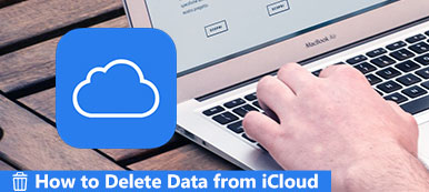 Delete Data from iCloud