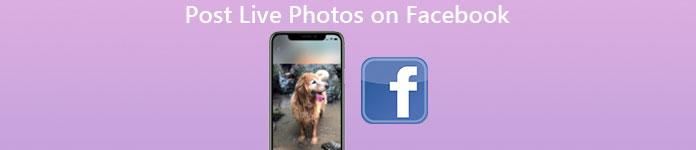 So posten Sie Live-Fotos auf Facebook