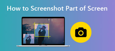 How to Screenshot Part of Screen