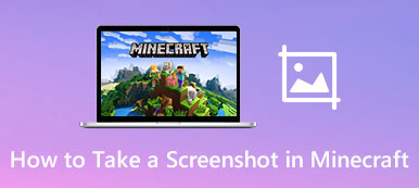 Take a Screenshot in Minecraft