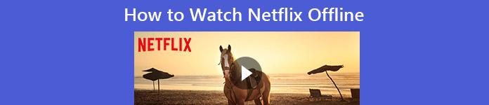 Wie man Netflix offline betrachtet