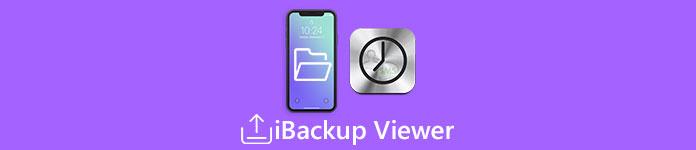 iBackup Viewer