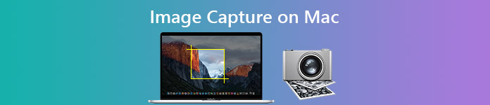Image Capture on Mac