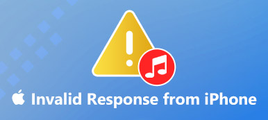 ITunes Invalid Response beheben