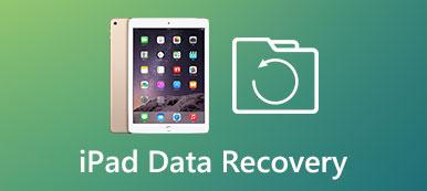 iPad Datenwiederherstellung