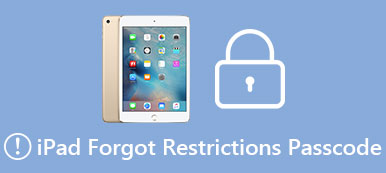 eset an iPad with Forgotten Restrictions Passcode