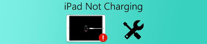 iPad wird nicht aufgeladen