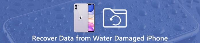 iPhone Datenwiederherstellung bei Wasserschäden