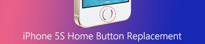 Home Button Replacement