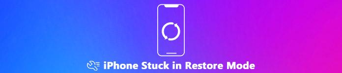 iPhone bloqué en mode restauration