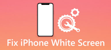 iPhone écran blanc