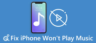 iPhone Won't Play Music