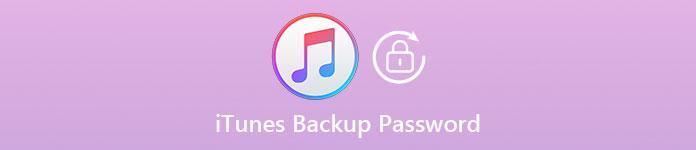 iTunes Backup-Passwort
