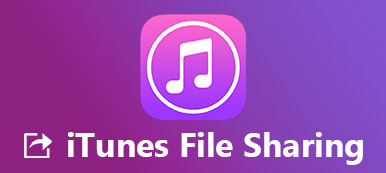 Set up And Use iTunes File Sharing