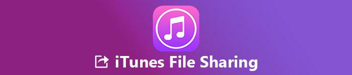 Configurer et utiliser le partage de fichiers iTunes