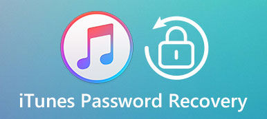 Holen Sie sich iTunes Password Recovery