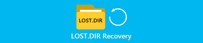 Lost Dir Recovery